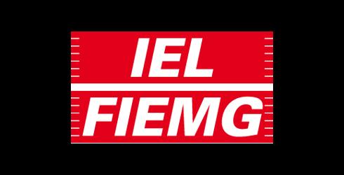 iel-fiemg